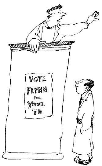 Irish Politics pic
